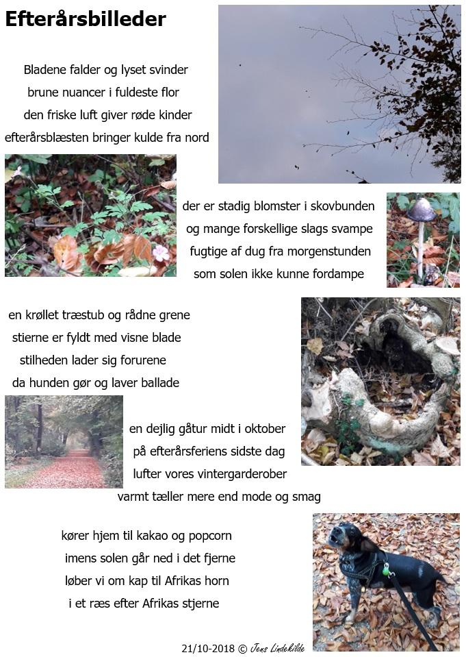Efterårsbilleder