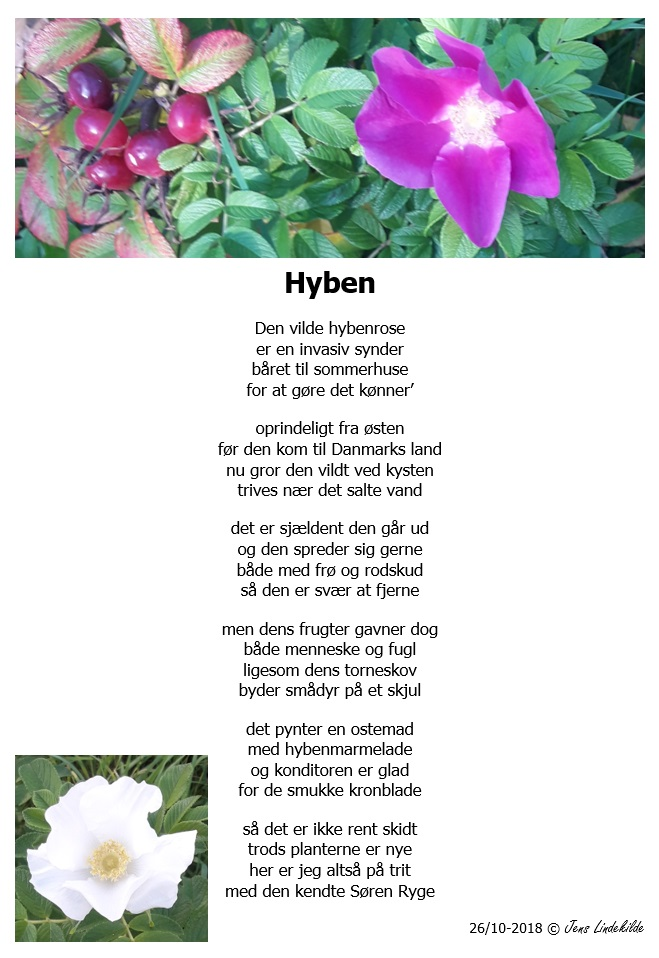 Hyben
