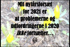 Nytaarsfortsaet-2021