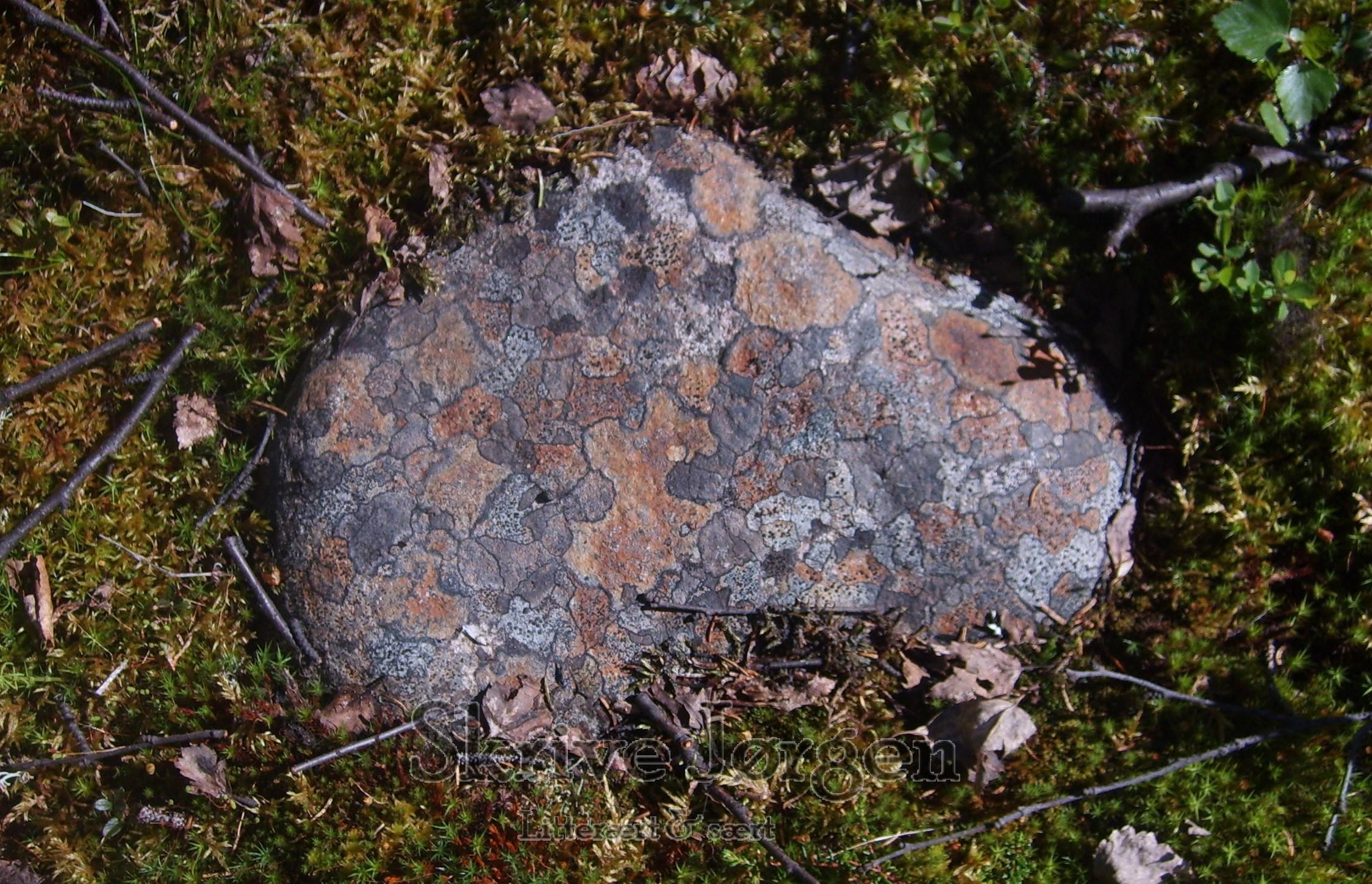 Fantastiske farver på en sten